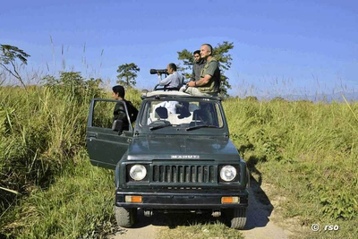 Jeepsafari im Kaziranga Nationalpark